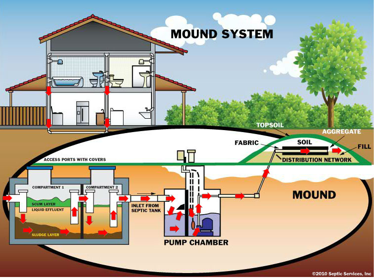 Image Result For Septic System Cleaner